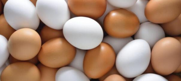 nutritional-value-of-egg-1