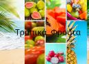 tropical fruits-1