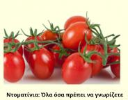 Cherry-tomatoes-1